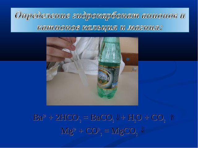 Ba2+ + 2HCO-3 = BaCO3 + H2O + CO2 Mg2+ + CO2-3 = MgCO3