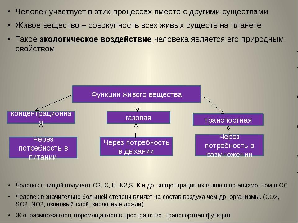 Человек участвует в этих процессах вместе с другими существами Живое вещество...