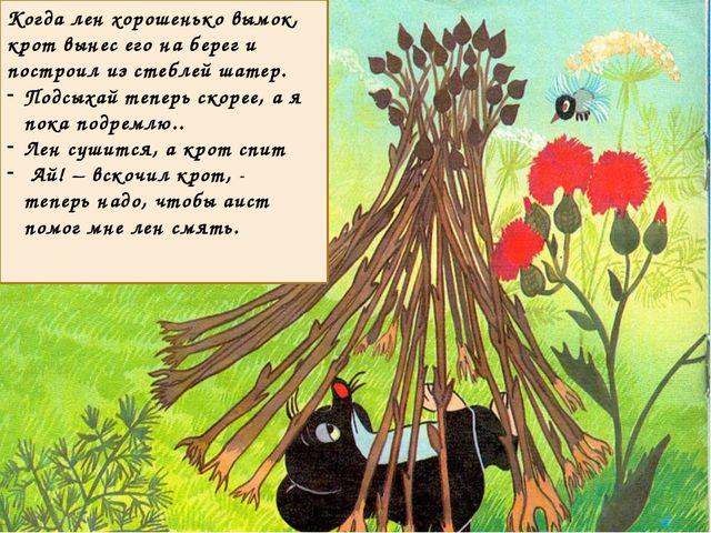 Когда лен хорошенько вымок, крот вынес его на берег и построил из стеблей ша...
