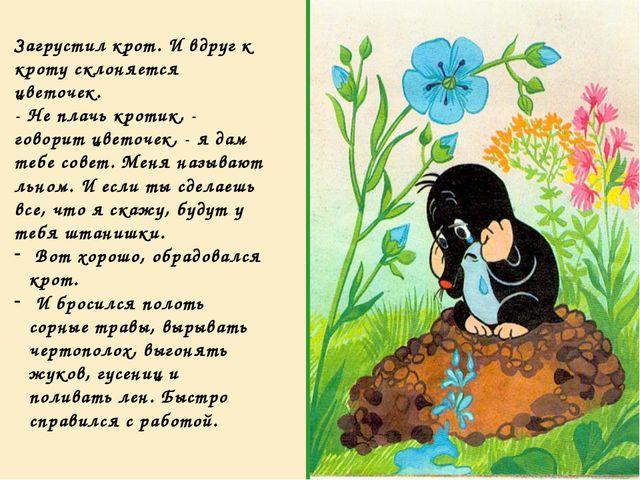 Загрустил крот. И вдруг к кроту склоняется цветочек. - Не плачь кротик, - гов...