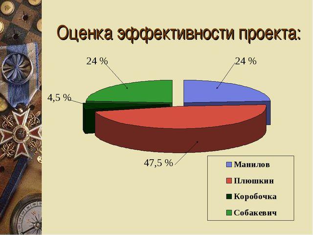 Оценка эффективности проекта: 4,5 % 24 % 24 % 47,5 %