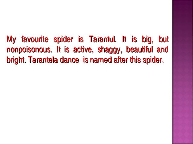 My favourite spider is Tarantul. It is big, but nonpoisonous. It is active, s...