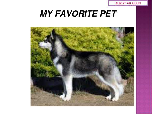 MY FAVORITE PET