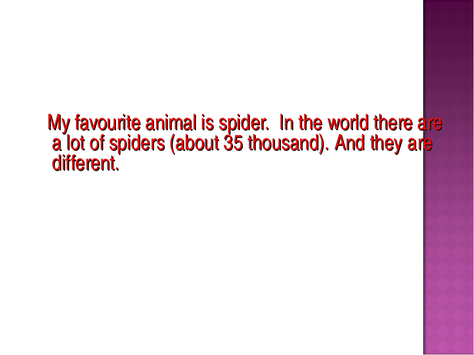 My favourite animal is spider. In the world there are a lot of spiders (abou...