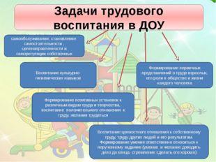 Задачи трудового воспитания в ДОУ Формирование позитивных установок к различн