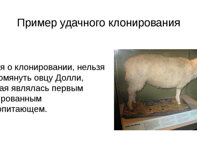 Пример удачного клонирования Говоря о клонировании, нельзя не упомянуть овцу...