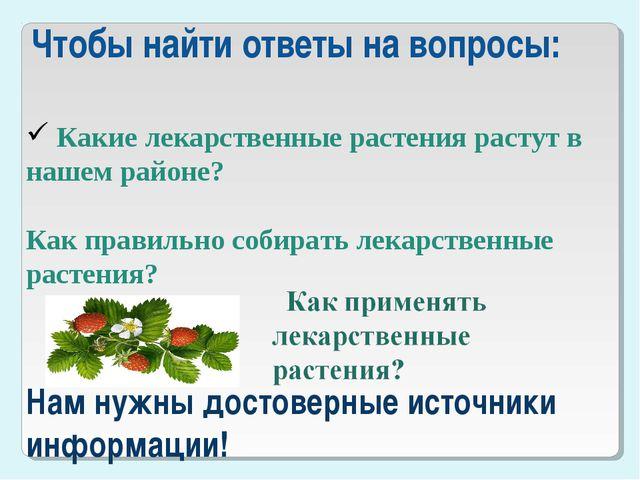 Чтобы найти ответы на вопросы: Какие лекарственные растения растут в нашем р...
