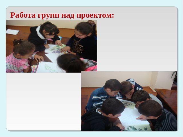 Работа групп над проектом: