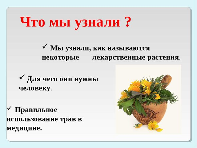 Что мы узнали ? Мы узнали, как называются некоторые лекарственные растения....