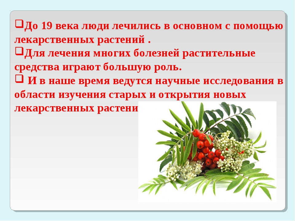 До 19 века люди лечились в основном с помощью лекарственных растений . Для ле...