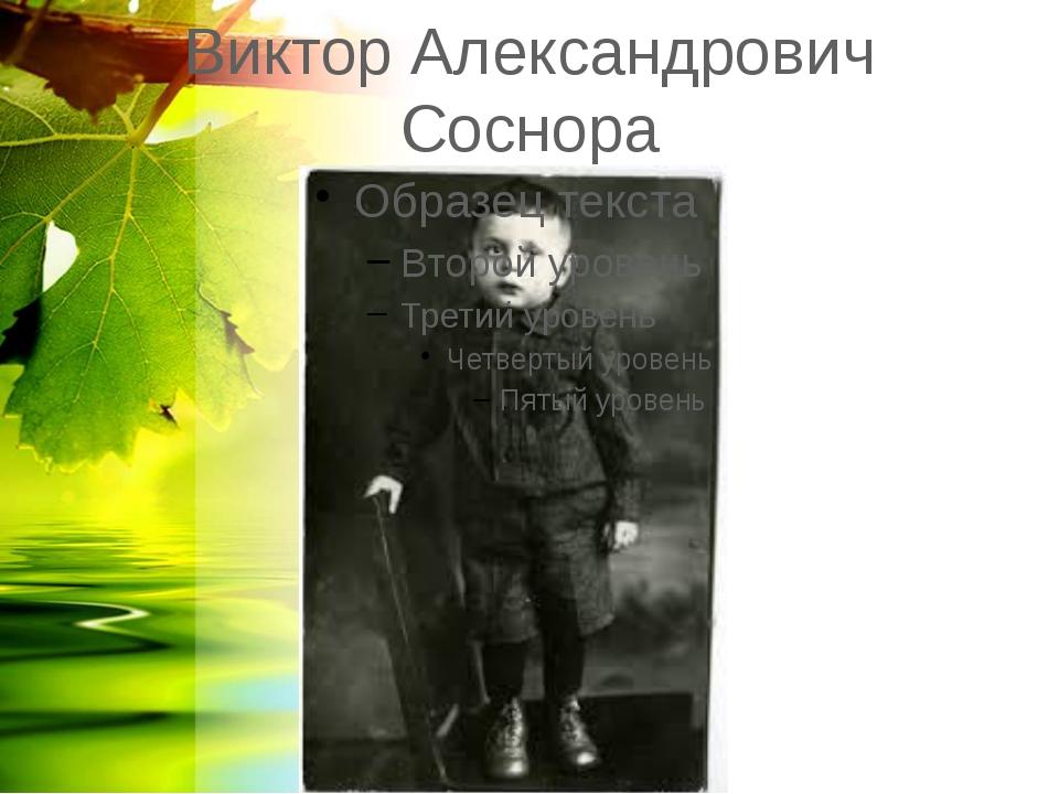 Виктор Александрович Соснора
