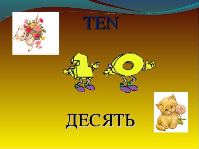 TEN ДЕСЯТЬ