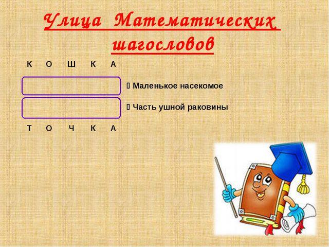Улица Математических шагословов КОШКА  Маленькое насекомое ...