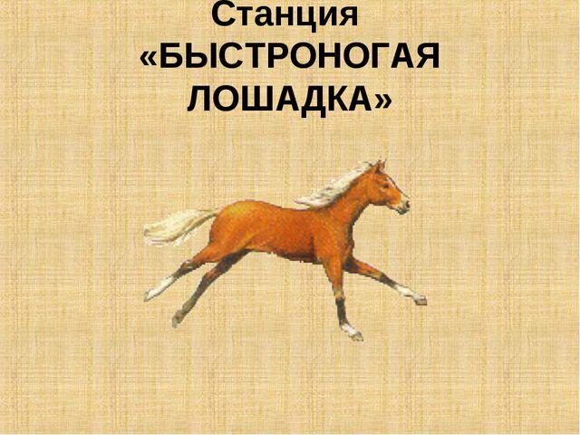 Станция «БЫСТРОНОГАЯ ЛОШАДКА»