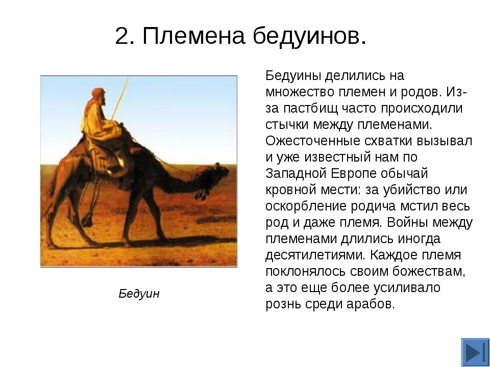 2. Племена бедуинов. Бедуины делились на множество племен и родов. Из-за паст...