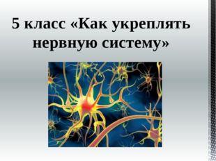5 класс «Как укреплять нервную систему»