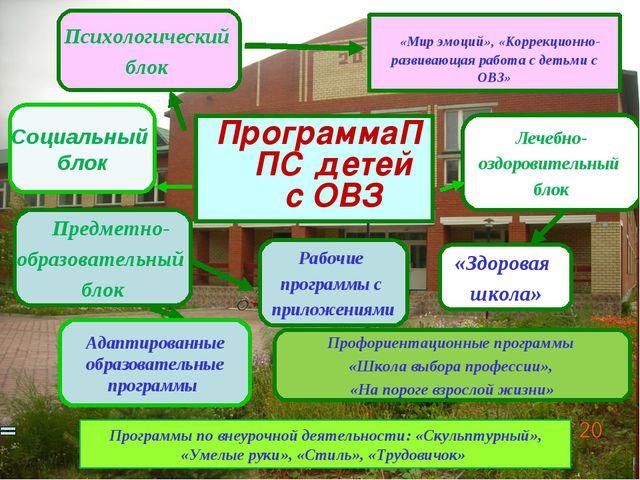 «Мир эмоций», «Коррекционно-развивающая работа с детьми с ОВЗ» ПрограммаППС...