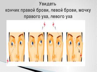 Увидеть кончик правой брови, левой брови, мочку правого уха, левого уха