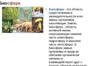 Биосфера Биосфера - это область существования и жизнедеятельности всех живых