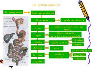 Асқорыту мүшелері Асқорыту жолы Ауыз қуысы: тіл, тіс Жұтқыншақ Ұзындығы – 11-