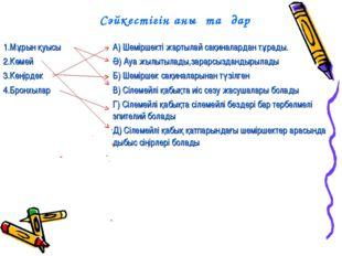 Сәйкестігін анықтаңдар 1.Мұрын қуысы 2.Көмей 3.Кеңірдек 4.БронхыларА) Шемірш