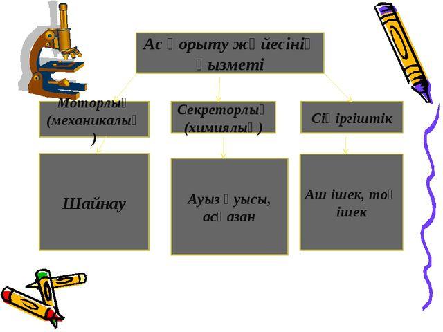 Ас қорыту жүйесінің қызметі Моторлық (механикалық) Секреторлық (химиялық) Сің...