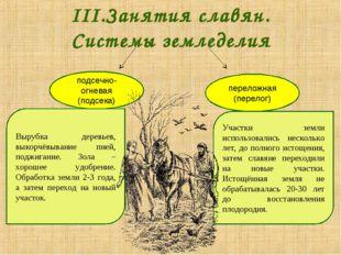 III.Занятия славян. Системы земледелия подсечно-огневая (подсека) переложная