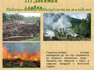 Подсечно-огневая (подсека) система земледелия III.Занятия славян. Подсечн
