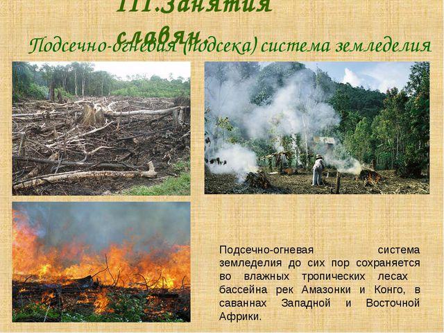 Подсечно-огневая (подсека) система земледелия III.Занятия славян. Подсечн...