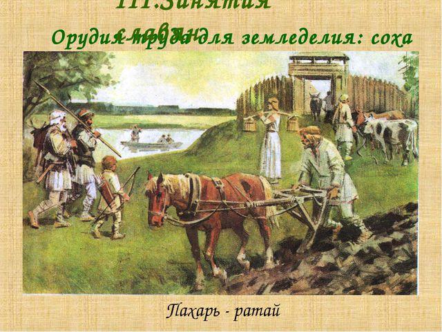 Пахарь - ратай  Орудия труда для земледелия: соха III.Занятия славян.