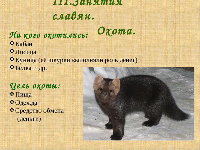 III.Занятия славян. Охота. На кого охотились: Кабан Лисица Куница (её шку...