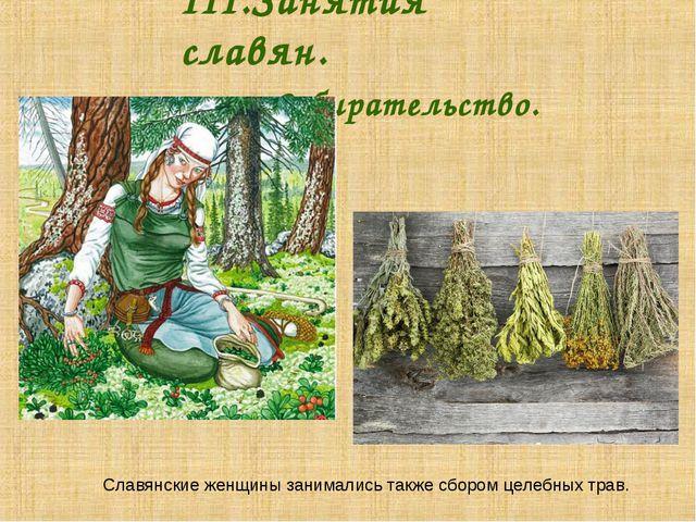 III.Занятия славян. Собирательство. Славянские женщины занимались также с...