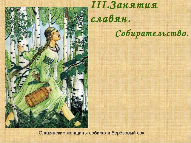 III.Занятия славян. Собирательство. Славянские женщины собирали берёзовый...