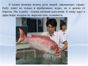 В жизни японцев велика роль морей, омывающих страну. Рыбу ловят не только в