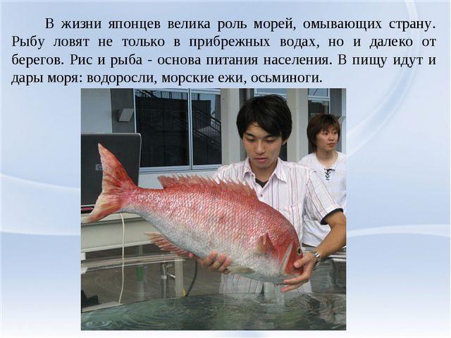 В жизни японцев велика роль морей, омывающих страну. Рыбу ловят не только в...