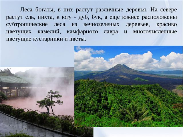 Леса богаты, в них растут различные деревья. На севере растут ель, пихта, к...
