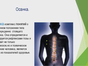 Осанка. Осанка-комплекс понятий о привычном положении тела непринужденно сто