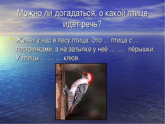 Можно ли догадаться, о какой птице идёт речь? Живёт у нас в лесу птица. Это …...