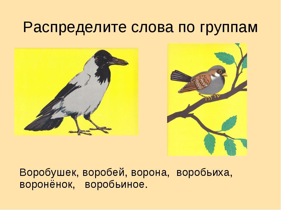 Распределите слова по группам Воробушек, воробей, ворона, воробьиха, воронёно...