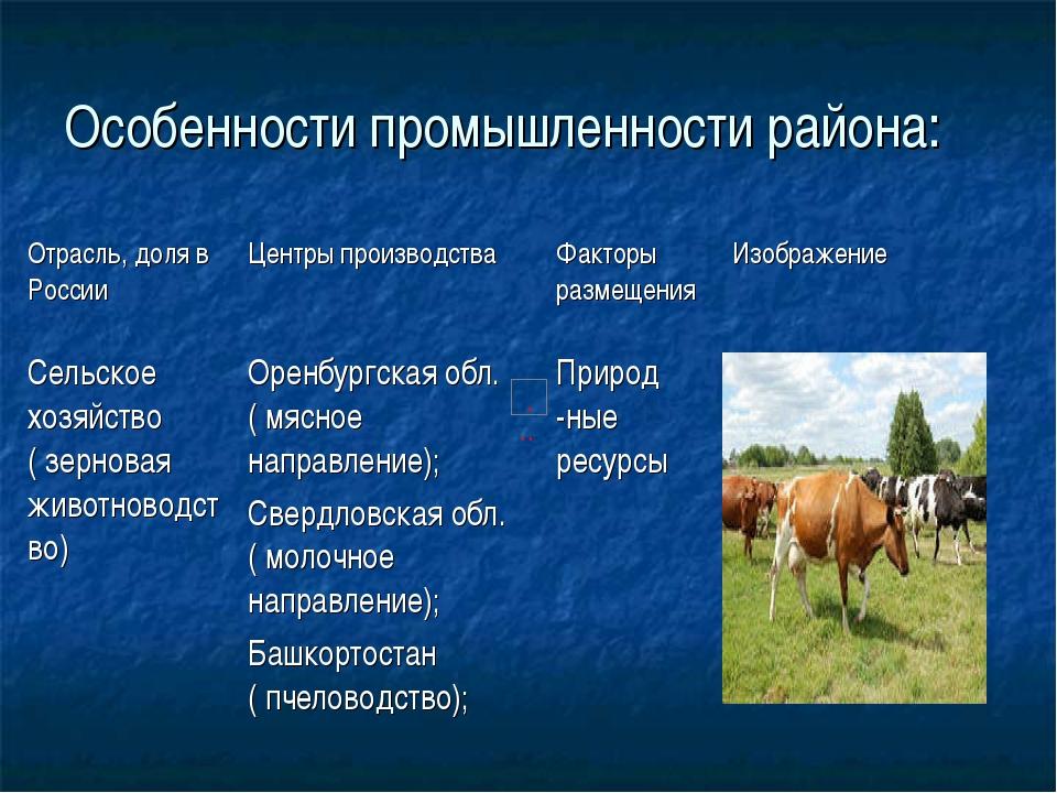 Особенности промышленности района: