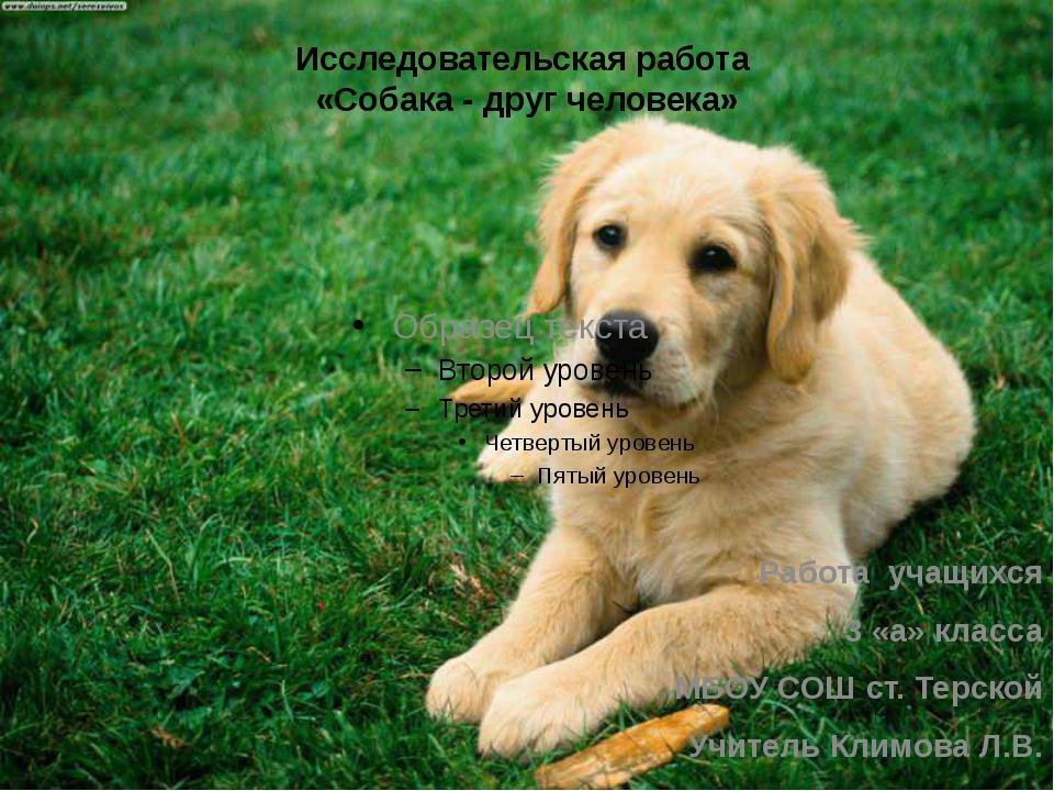 Исследовательская работа «Собака - друг человека» Работа учащихся 3 «а» класс...