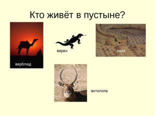 Кто живёт в пустыне? верблюд змеи варан антилопа