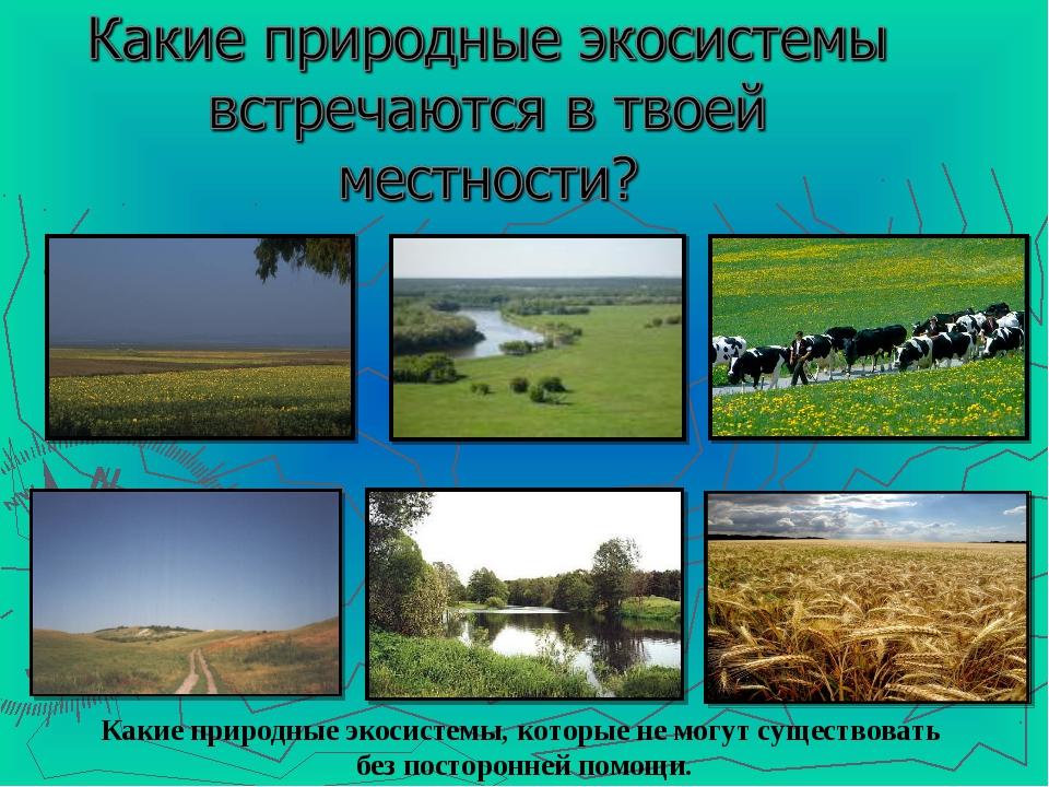Какие природные экосистемы, которые не могут существовать без посторонней пом...