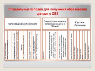 Специальные условия для получения образования детьми с ОВЗ Организационное об