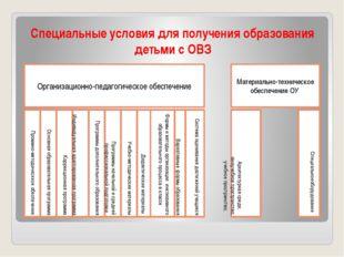 Специальные условия для получения образования детьми с ОВЗ Организационно-пед