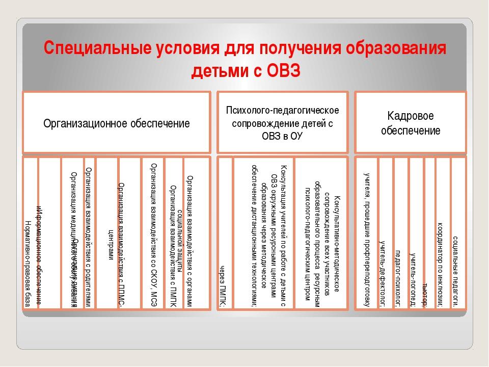 Специальные условия для получения образования детьми с ОВЗ Организационное об...