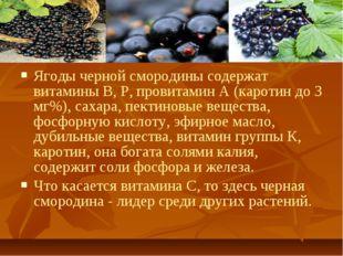 Ягоды черной смородины содержат витамины В, Р, провитамин А (каротин до 3 мг%