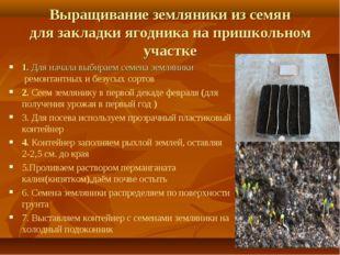 Выращивание земляники из семян для закладки ягодника на пришкольном участке 1