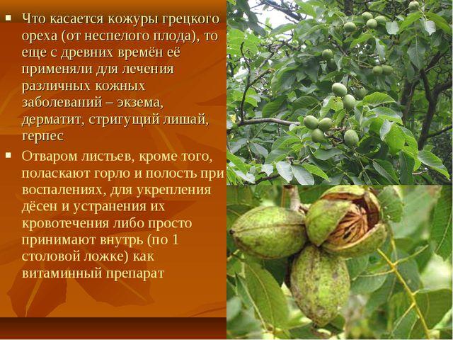 Что касается кожуры грецкого ореха (от неспелого плода), то еще с древних вре...