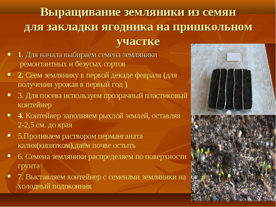 Выращивание земляники из семян для закладки ягодника на пришкольном участке 1...